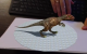 Augmented reality and dinosaur control using arrow keys